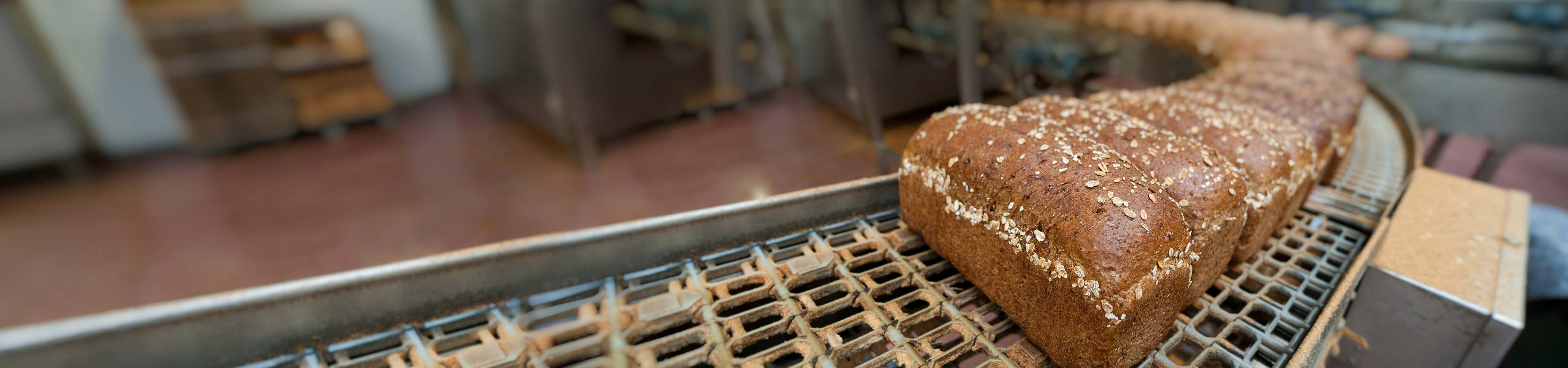 Drainage for Bakeries